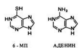 Антиметаболіти в терапії пухлин - рак: експерименти і гіпотези