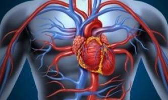 Що таке атеросклероз судин серця, лікування патології