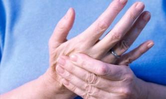 Що таке сплетіння спинномозкових нервів, яку роль відіграють в організмі