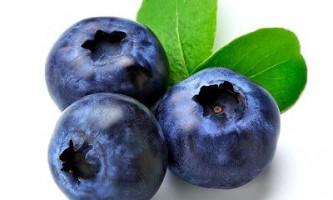 Лохина: корисні властивості цієї унікальної ягоди