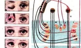 Дослідження зорового аналізатора - дитяча неврологія