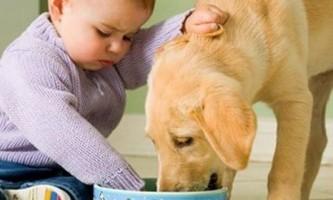 Ентеробіоз у дітей: всі способи лікування паразитарних хвороб