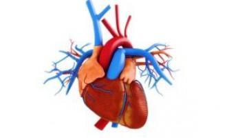 До чого призводить стеноз коронарних судин серця, методи лікування
