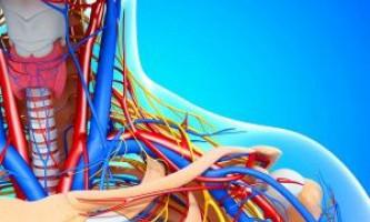 Яке лікування атеросклерозу судин шиї ефективно?