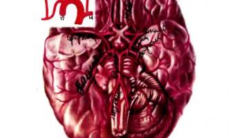 Кровопостачання головного та спинного мозку - дитяча неврологія
