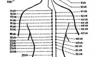 Меридіан сечового міхура (vii) - голкотерапія в анестезіології та реаніматології