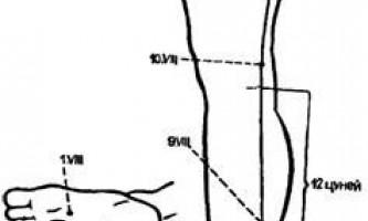Меридіан нирок (viii) - голкотерапія в анестезіології та реаніматології