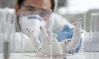 Нове в лікуванні хвороби альцгеймера