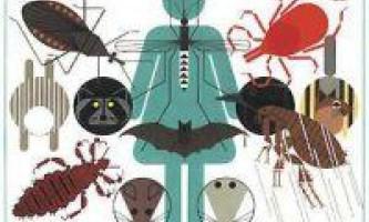 Переносники і збудники хвороб