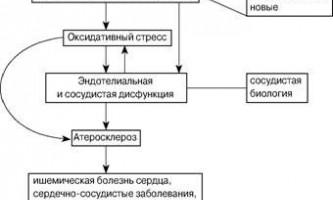 Різноманітність серцево-судинних захворювань - судинна біологія в клінічній практиці
