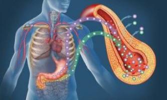 Розвиток діабету другого типу тісно пов`язане з порушеннями управлінських функцій в організмі