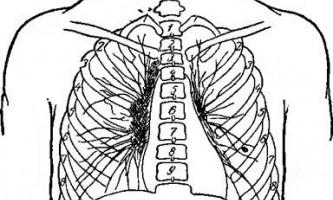 Рентгенодіагностика туберкульозного бронхоаденита - довідник лікаря-фтизіатра