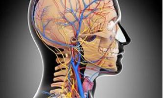 Вчені вирішили з`ясувати, чи є зв`язок між деменцією і інсультами