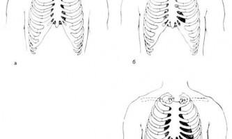 Топографія серця - клінічна анатомія серця