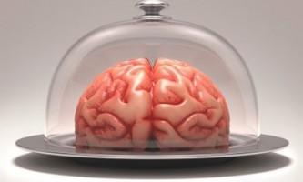 Шкідлива їжа здатна зменшувати розмір мозку