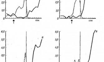 Взаємини між слюноотделітельная і рухової реакціями при виробленні умовних рефлексів другого типу - інтеграційна діяльність мозку