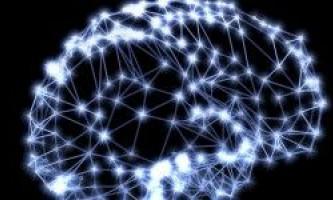 За пам`ять відповідають не тільки нейрони