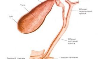 Захворювання жовчовивідних шляхів